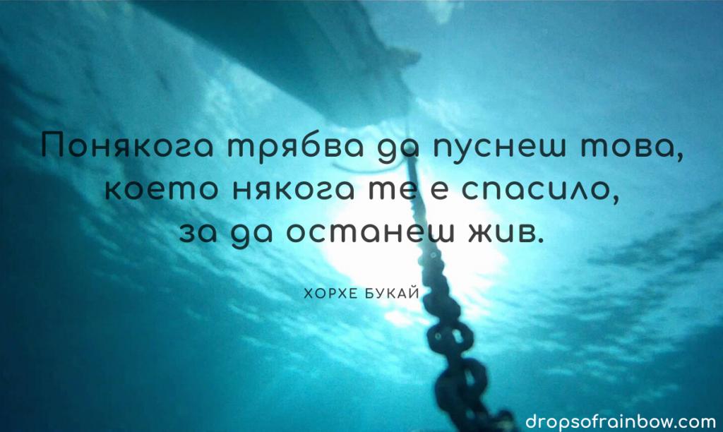 """Цитат от """"Пътят на сълзите"""" на Хорхе Букай: """"Понякога трябва да пуснеш това, което някога те е спасило, за да останеш жив."""""""